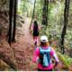 2019 巴渝十二峰|凱樂石跑山訓練賽