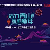 2019 青山绿水红钢城迎新国际半程马拉松