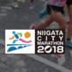 新潟城市马拉松
