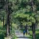 九月逃跑计划 | Salomon城市越野跑南京站