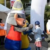 2018熊本城马拉松赛事照片(图片均来自官方脸书)