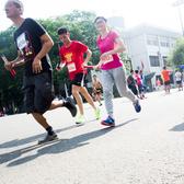 广州接力马拉松3