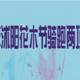 2019 年沭阳花木节骑跑两项挑战赛