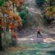 """2019 第二届""""一带一路""""中国四明山100公里山地户外运动挑战赛"""