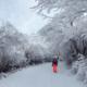 2020 年第十七届乌鲁木齐丝绸之路冰雪风情节暨第四届雅玛里克山雪地越野赛