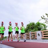 2019 嘉兴湘家荡半程马拉松精英赛