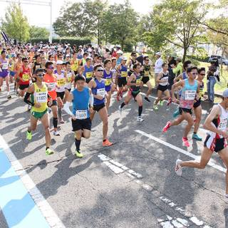 2017新潟马拉松赛事照片(图片均来自官方脸书)