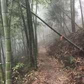 Xtrail2016第四届宁海温泉山地马拉松赛