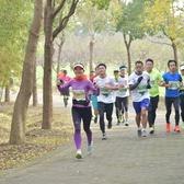 11.27上海奉贤半程马拉松