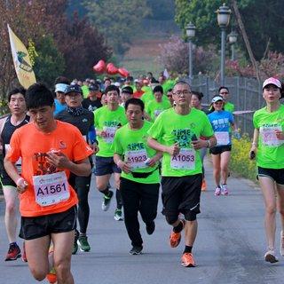 2018 阳山半程马拉松