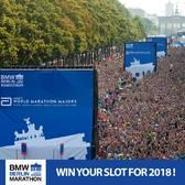 2017柏林马拉松官方赛事照片