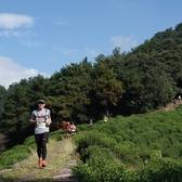 2018吉武.杭州山地越野赛-赛道