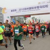 2016邳州半程赛事照片